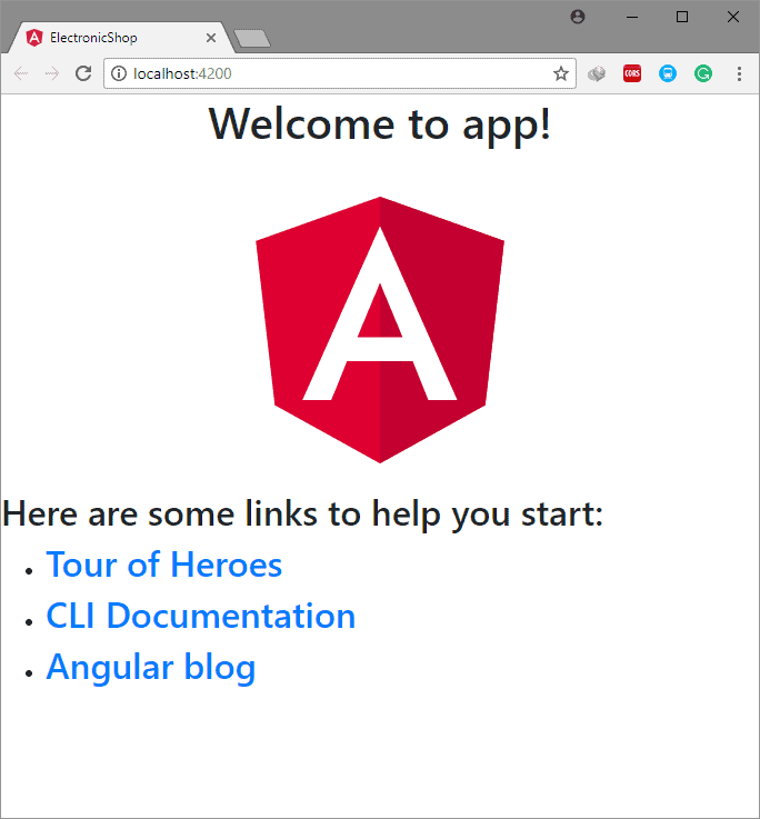 Angular View after bootstrap installed.