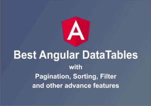 10 Best Angular DataTables with Pagination, Sorting and Filter